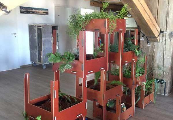 Pflanzen im Coworking Wittenberge